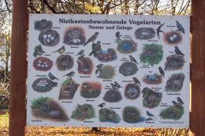 tierpark-freiberg-sachsen-24