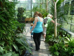 botanischer-garten-chemnitz-tropenhaus-3