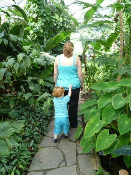 Ausflugsziel Botanischer Garten Chemnitz