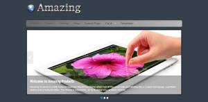 Free Premium WordPress Theme Amazing Products