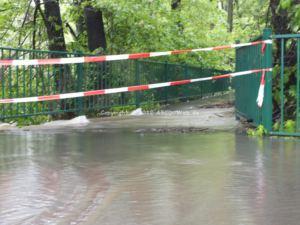 Hochwasser Kreuzteiche Fussweg 1