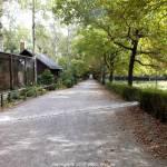 Wildgatter Oberrabenstein - leere Wege