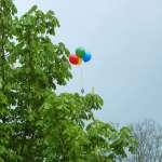 Luftballon im Baum - Frühchentreffen im Klinikum Chemnitz 2015